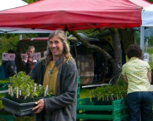 Makaria Farm hosts an annual organic tomato plant sale.