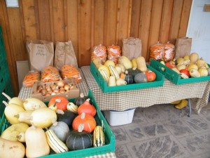 Makaria Farm's organic bulk vegetables ready for pick up